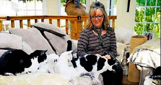 Evinde 122 kedi birden besliyor