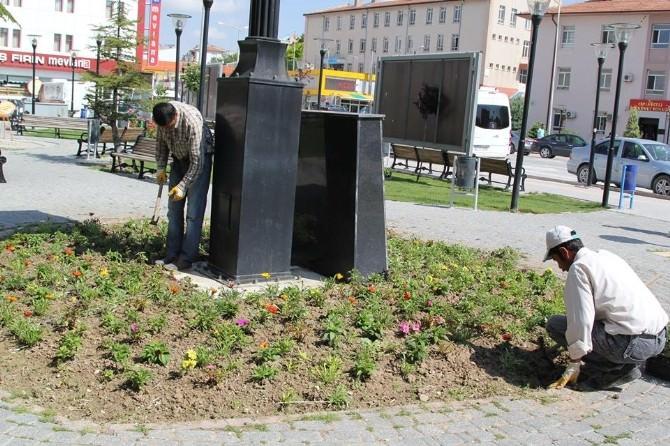Cihanbeyli'ye 5 Bin Çiçek Fidesi Dikiliyor