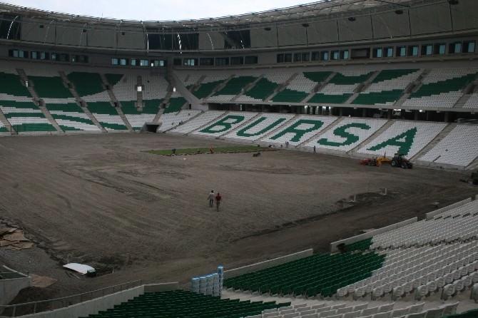Timsah Arena'da Çim Serme İşlemine Başlandı