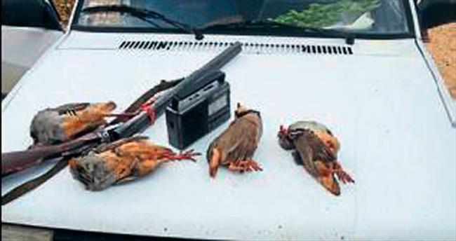 Kaçak avcıya 3 bin TL ceza
