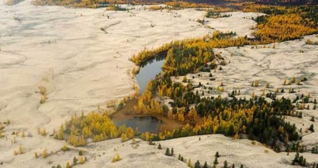 Çin, Sibirya'da tarım arazisi kiralıyor