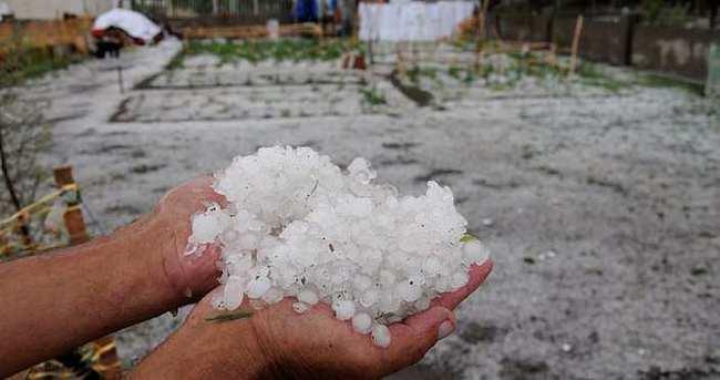 Dolu yağışı 18 dönüm araziye zarar verdi