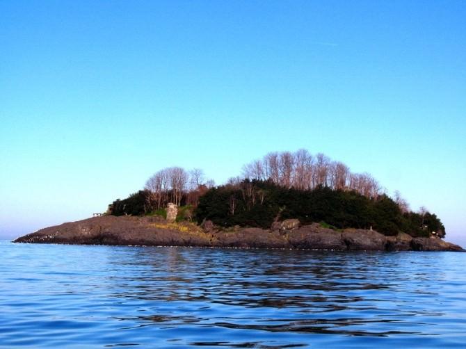 Giresun Adası Açıklarında Açık Denize Yüzme Yarışması Düzenlenecek