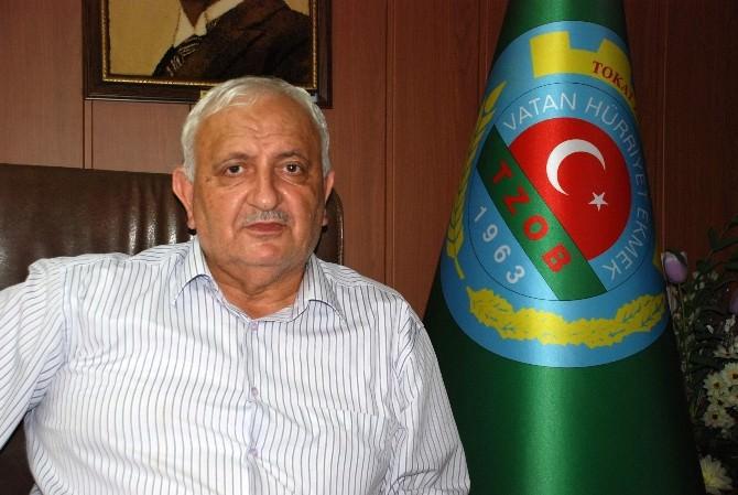 Türkiye'de Ceviz İthalatı Devam Ediyor
