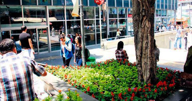 Karanfil Sokak çiçek açtı