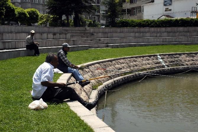 Porsuk'ta Balık Keyfi