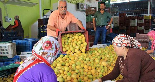 Haziranda en çok limonun fiyatı arttı