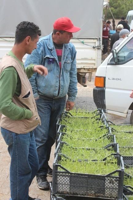 Tıbbi Aromatik Bitki Yetiştiricilerine Dekara 100 Liralık Destek