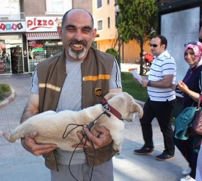 Yorulan Köpeğini Kucağında Taşıdı