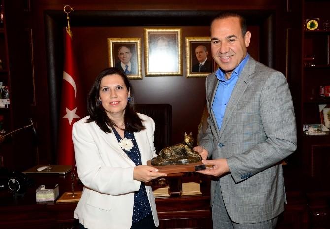 """Sözlü: """"Kuzey Kıbrıs, Türk Dünyasının Önemli Bir Parçasıdır"""""""