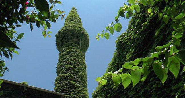 Minare yeşile boyandı