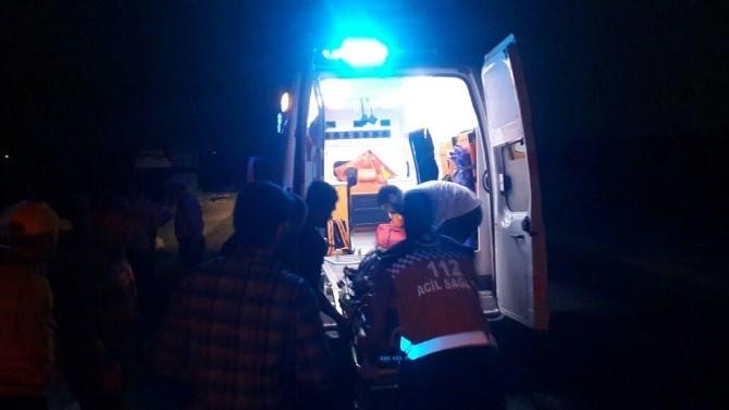 Midyat'ta Kamyon Eşeğe Çarptı: 1 Ölü, 1 Yaralı