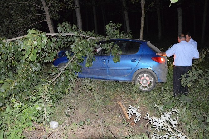 Otomobil Tarlaya Uçtu: 1 Yaralı