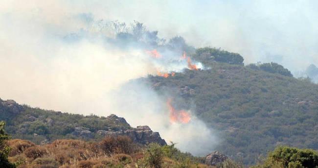 Bodrum'da yangın mahallelere sıçradı