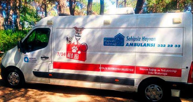 Yaralı hayvanlar için ambulanslı müdahale