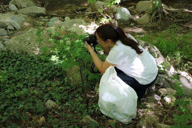 Sadağı Kanyonu Biyolojik Çeşitlilik Ve Envanter Çalışması Başladı
