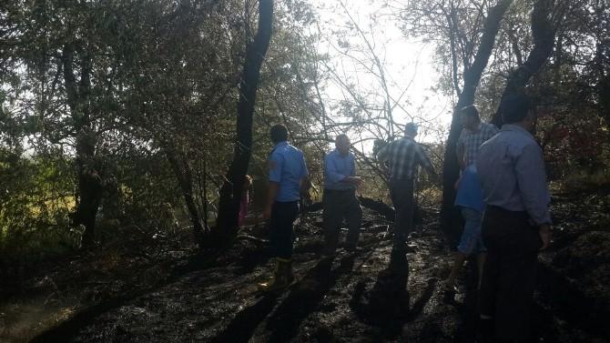 Van'da Bahçe Yangını