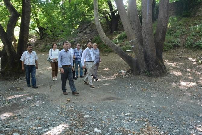 Yunusemre Belediyesi Piknik Alanlarını Güzelleştiriyor