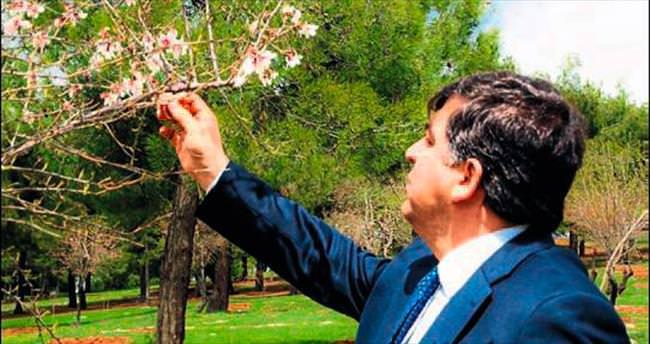 Kurda kuşa özel meyve bahçesi