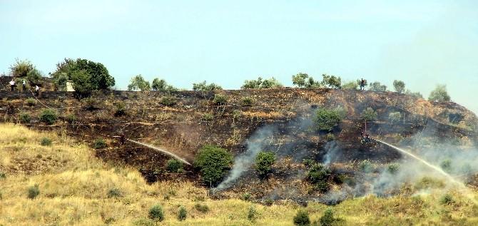 Aydın'da Örtü Yangını Korkuttu
