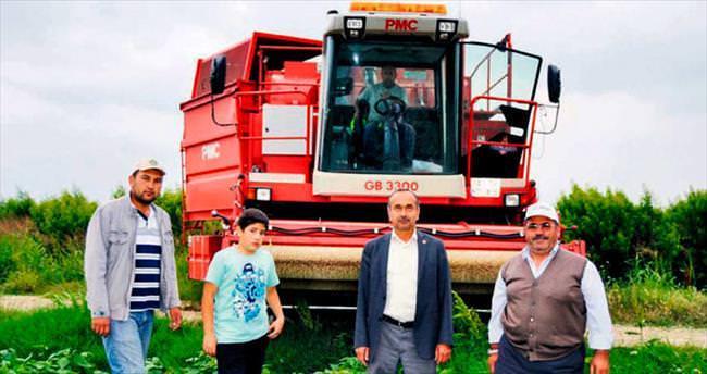 Fasulyede makineli hasat dönemi