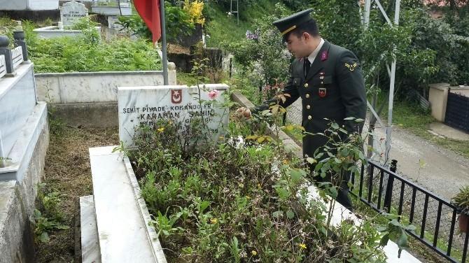 Görele'de Şehit Mezarlarına Asker Eli