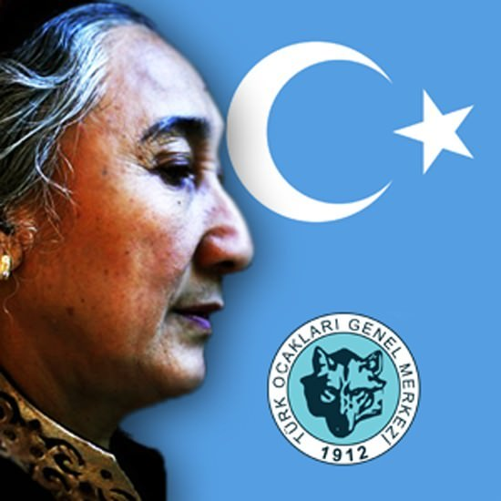 Türk Ocakları Rabia Kadir'in Türkiye'ye Girebilmesi İçin İmza Kampanyası Başlattı