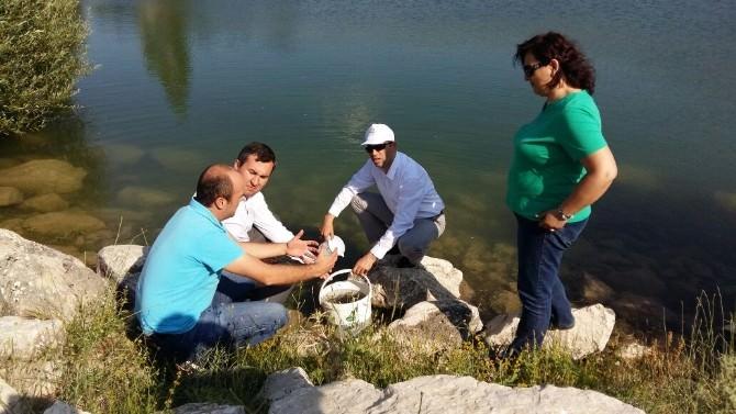 Burdur'da Göletlere 76 Bin Pullu Sazan Bırakıldı