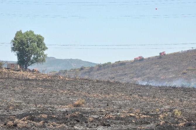 Aliağa'daki Yangında 10 Hektarlık Alan Kül Oldu