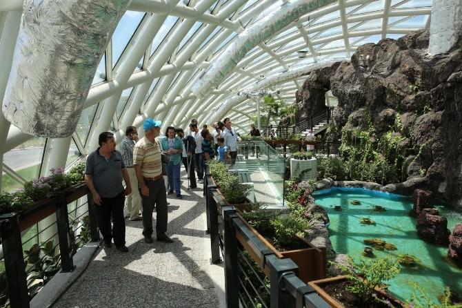 Tropikal Kelebek Bahçesi Bayramın 3. Günü Açık Olacak