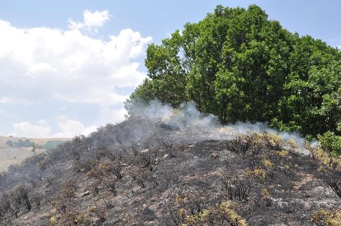 Pülümür'de Korkutan Yangın