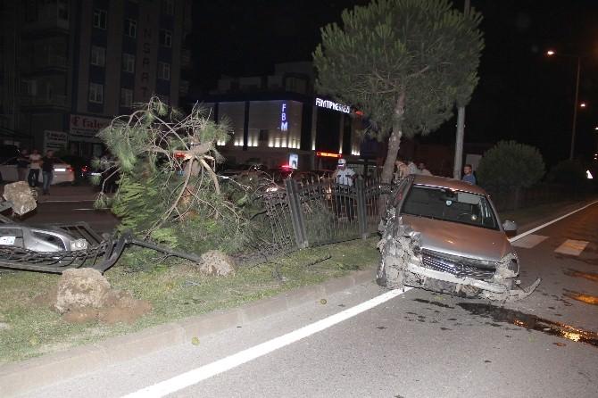 Otomobil Çam Ağacına Çarptı: 1 Yaralı