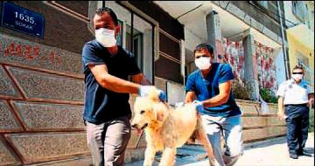 Hayvan besleyen aileye para cezası
