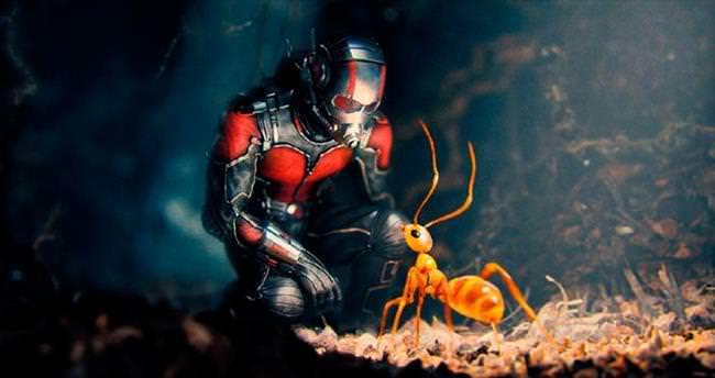 Karınca kararınca bir kahraman!
