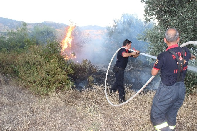 Aydın'da İtfaiye Ekipleri Yangından Yangına Koştu