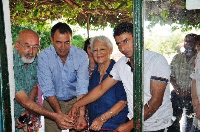 Ayvalık'ta Ünlü Şair Sabahattin Ali Adına Kütüphane Açıldı
