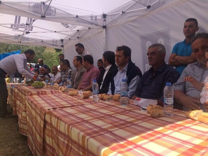 Koşapınar'da Festival Coşkusu