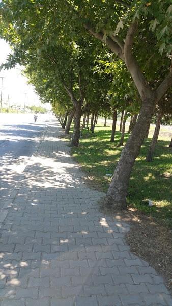 Alaşehir Park Ve Bahçeleriyle Daha Da Güzel