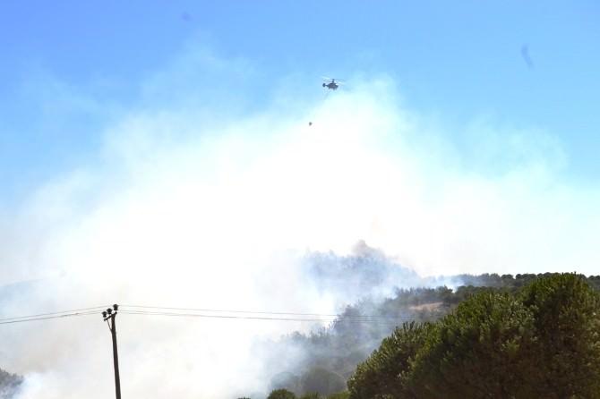 Ayvalık'ta Çöplükte Çıkan Yangın Ormana Sıçradı