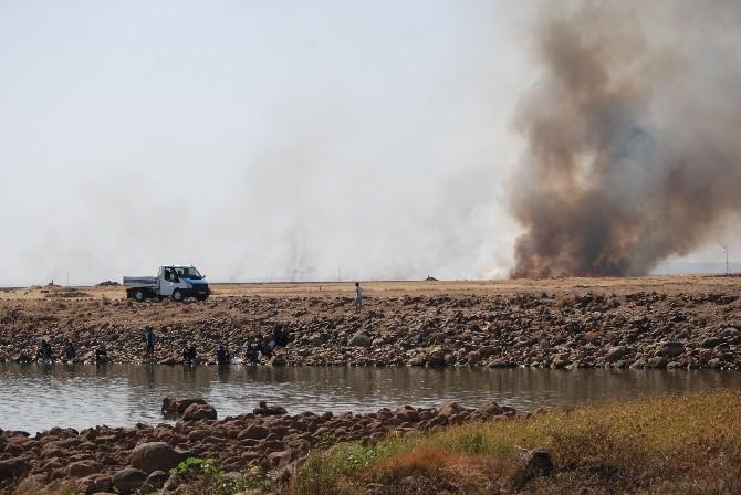 İdil'de Anız Yangınlarına Çözüm Bulunamıyor