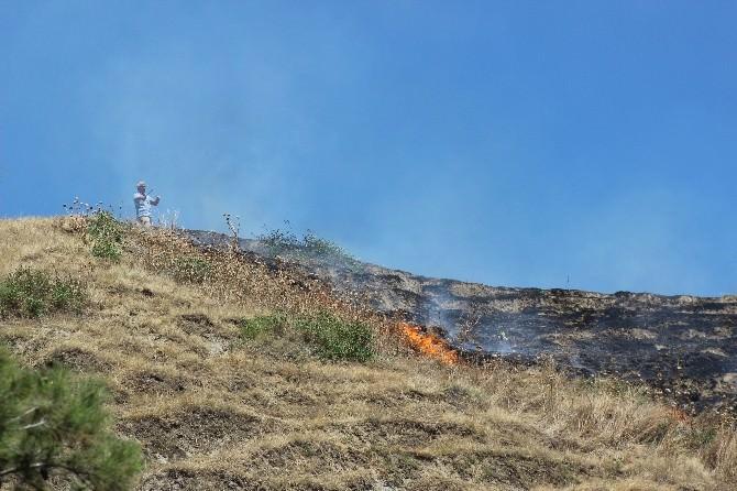 Salihli'de Ot Yangını Ormana Sıçramadan Söndürüldü