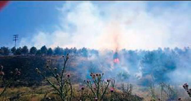 10 dekar orman alanı zarar gördü