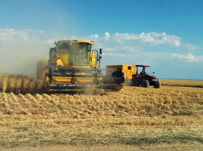 Buğday Hasadı Çiftçinin Yüzünü Güldürdü