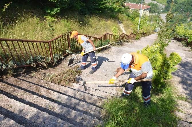 Düzce Belediyesi Kalıcı Konutlarda Mıntıka Temizliği Yapıyor