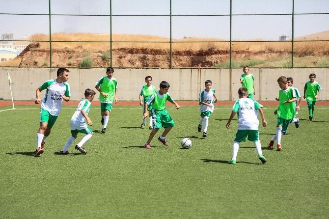 Şehitkamil'de Yaz Spor Okulları Farkı Yeşil Sahada Devam Ediyor