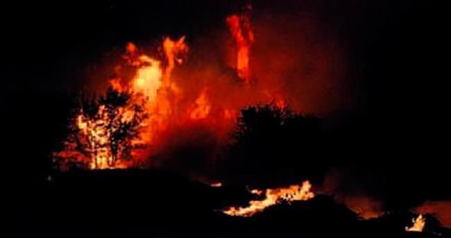Aliağa'da çıkan yangın korkuttu