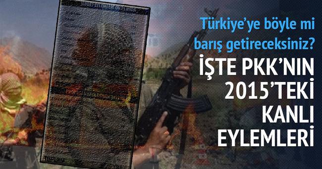 PKK'nın terör eylemleri 2015'te zirve yaptı