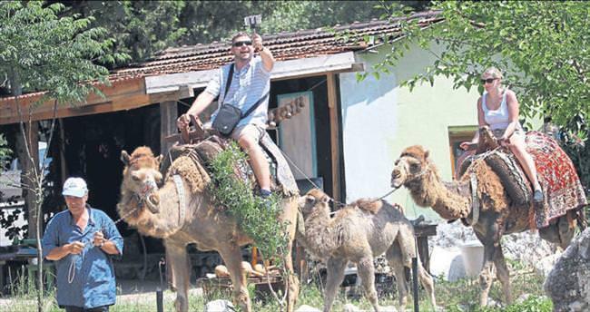 Binek hayvanlar turizmin hizmetinde