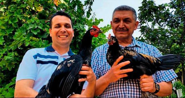 Çevre Dedektifi Horoz dördüncü kez işbaşında