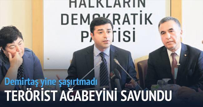 Demirtaş, PKK'lı ağabeyini savundu